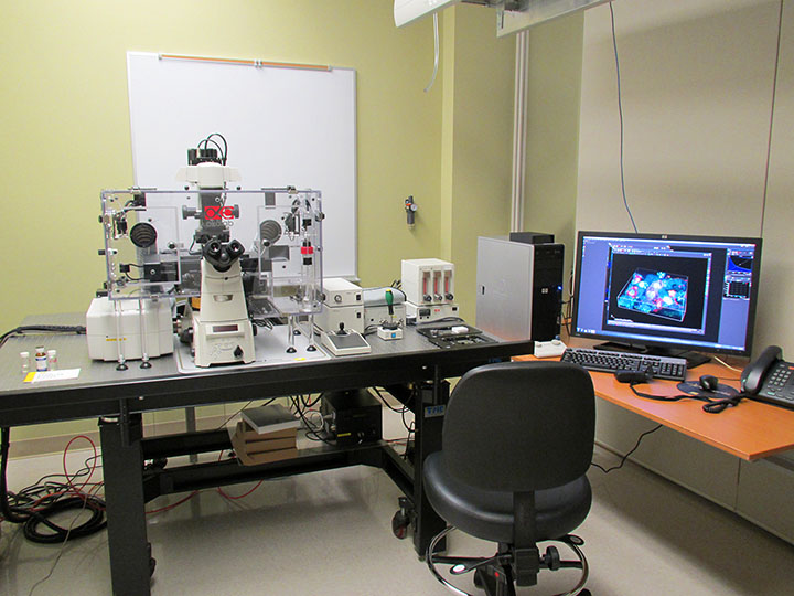 Nikon A1-Rsi Confocal Microscope photo